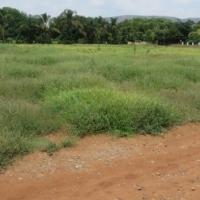 1 ha vacant land for sale in Annlin, Pretoria