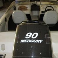 Viking Carrera with 90HP Mercury