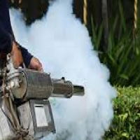 Fumigation done by Homes at affordable rates, Cape Town