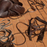 Horse riding gear, saddle, bridle, ropes etc