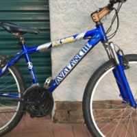 Avalanche mountain bike for sale. Great condition!