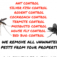 Pest Control Contract Offer for Offices, Home Owners , Restaurants , Cafe Shops , Supermarkets
