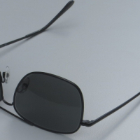 Polaroid Sunglasses brand new