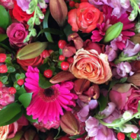 Very profitable Florist in busy Shopping Centre for sale at discounted price.