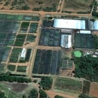 29ha of bushveld for sale in Kameelfontein