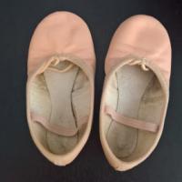 Ballet shoes, pink skirt, pink leotard