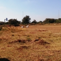LAST VACANT 1ha PLOT FOR SALE IN MONDUSTRIA, PRETORIA!