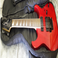 Ibanez Electric Guitar RG series
