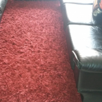 carpet for sale!