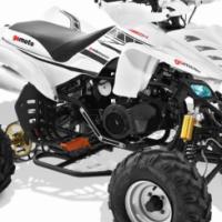 2017 Gomoto ATV150