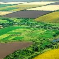 Buyer looking for agricultural land in Joburg or Pretoria.