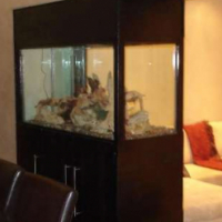 Twin Fish Tanks