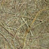 Guineapigfood,hay,lucerne