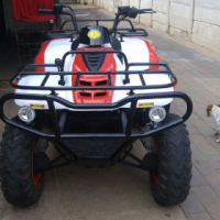 quad and pitbike for sale