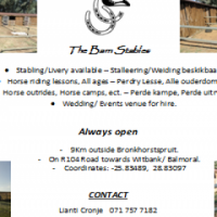 Horse stabling and Ridding lessons available