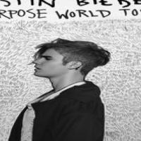Justin Bieber Golden Circle Tickets x2 (JHB)