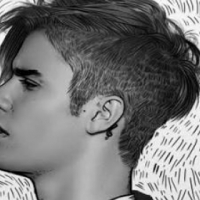 2 x Justin Bieber R520 each 14 May Jhb