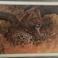 Original Wild life oil on canvas paintings for Sale by world renowned artist Lute Vink.