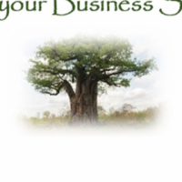 Assistance with Business Solutions