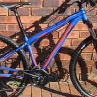 Silverback 29er mountain bike