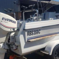 625 COBRA CAT with Two Evinrude Motors For Sale