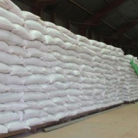 Maize Meal for Sale - Looking for Dealers / Distributors !