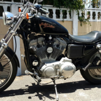 2002 Harley-Davidson 883 Sportster