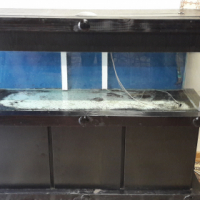 large fish tank forsale