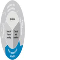 Business Plans, Financial Advisory, Risk Management, Audit, Compliance Services