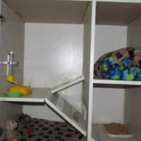 Guinea pig, hamster or rat custom cage