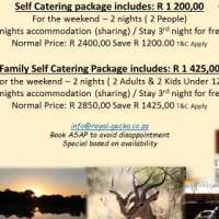 Crazy Winter Specials 50 % OFF - Bushveld Lodge Accommodation