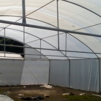 Greenhouse bela bela,0640817930,Greenhouse modimolle,Greenhouse nlystroom