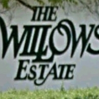 Willows Estate living
