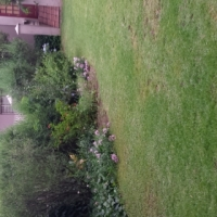 One bedroom unit to rent on plot Benoni Small Farms