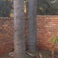 Garsfontein thatch duette