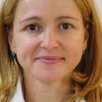 Transition mediator - finance roles