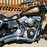 Harley Davidson to swap for Adventure bike