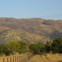 124 Ha citrus farm in Wolhuterskop  with 2 x houses with 4 Bedrooms each 2 bathrooms each.
