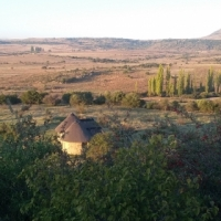 Certified organic beef, pork, mutton and veggie farm and business in South Africa