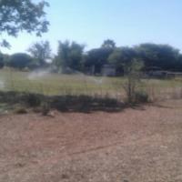 Plush 30 Ha farm for sale