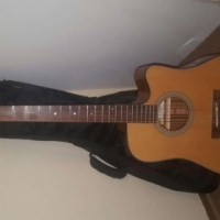 Takamine G Series Semi Acoustic Guitar