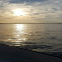 Deep sea fishing charters / Bay cruises
