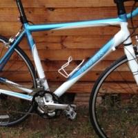 Bontrager Road Bike