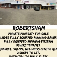 Business shopping centre for sale