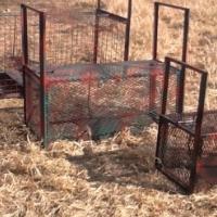 trap's for wild animals