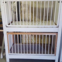 Twin cot for sale.