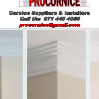 Procornice Ceiling and Cornice Specialists