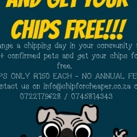 Get your pets chipped for FREE! Here is how!