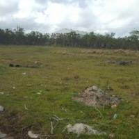 Vacant plot opposite Algoa Steel, Cape rd