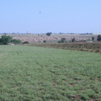 Vacant 1 hectare plot for R 185.000 ! Only 1 left !